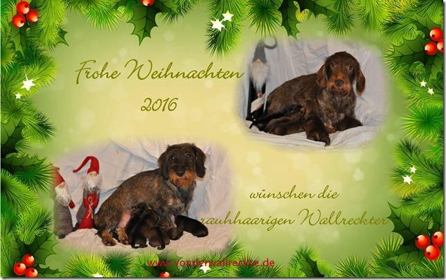 Weihnachtsgrüße Jagdlich.Nachlese 2016 Juni Dez